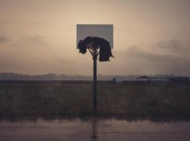 Hangin'Around (2)
